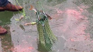 Хапуга для ловли рыбы зимой
