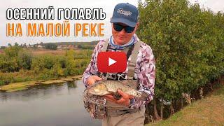 Ловля голавля на малой реке спиннингом