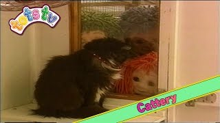 Tots TV: Cattery (1996)
