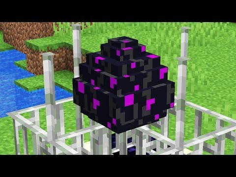 How to USE The Ender Dragon Egg!