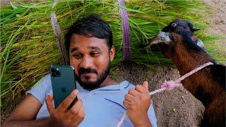 నా లవర్ సిరి | Lover Siri | My Village Show Comedy
