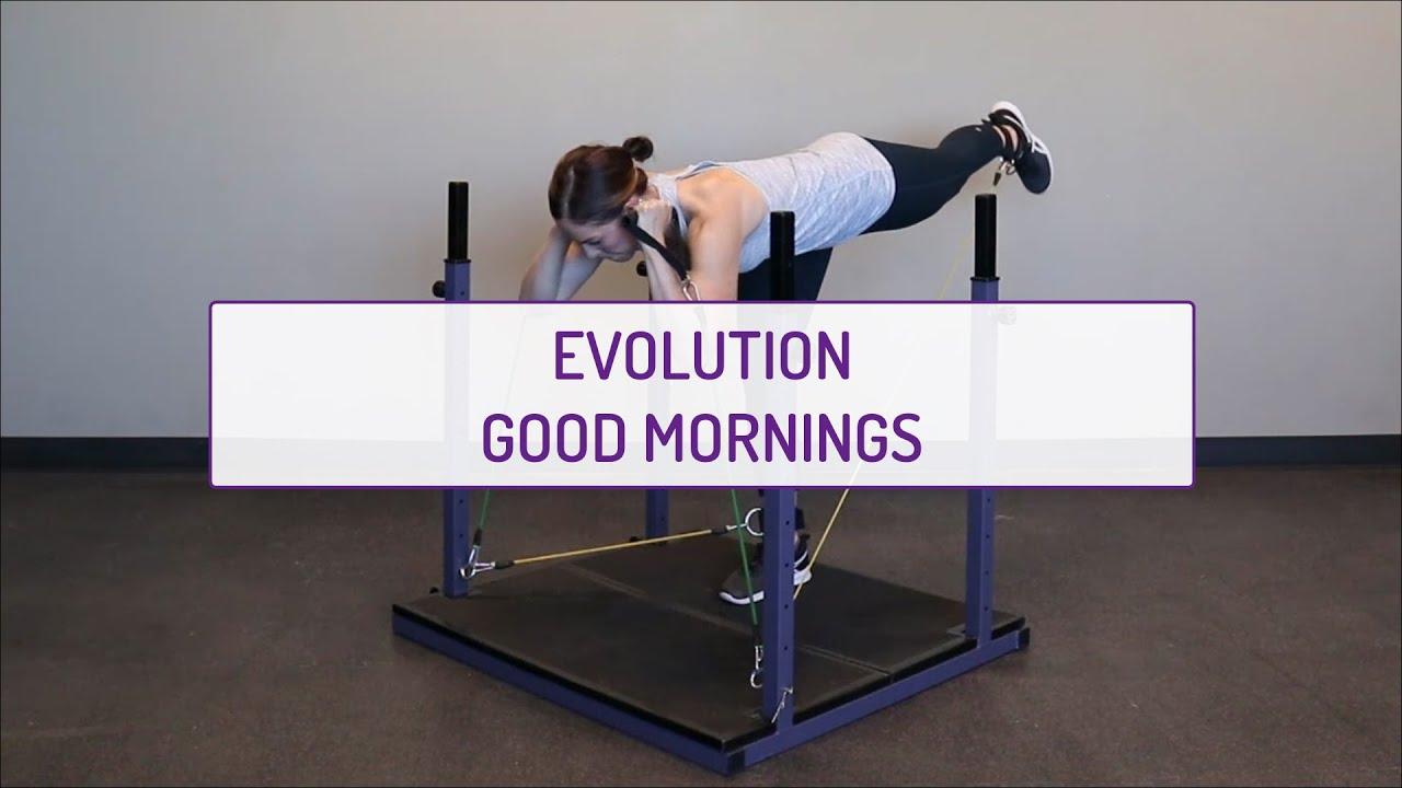 Evolution Good Mornings