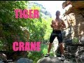 Tiger Crane Kung Fu - Learn the Beginning of the Kata! video download