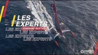 Les Experts - Team Manager