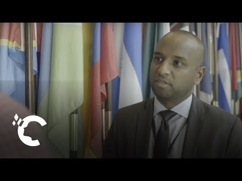Career Insights: The United Nations
