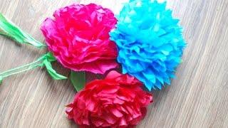 Film do artykułu: Jak zrobić kwiaty z bibuły...
