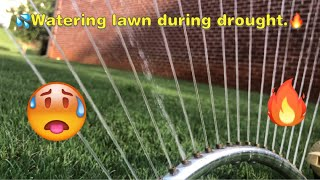 How to water lawn during Drought, watering tips