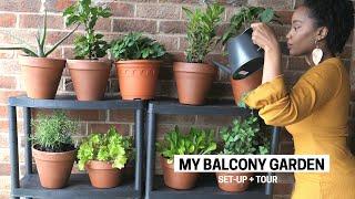 My Apartment Balcony Vegetable Garden | Container Gardening Beginner Tips, Set-Up & Tour