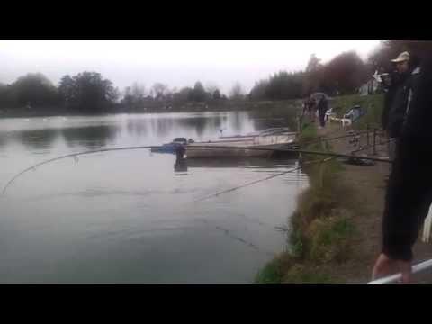 Video che pesca su un donka su un abramide comune