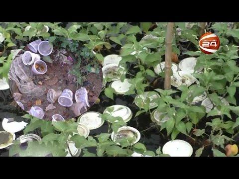 ঝিনাইদহে বেড়েছে প্লাস্টিকের তৈরী ওয়ান টাইম প্লেট ও গ্লাসের ব্যবহার