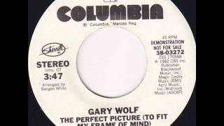 "Gary Wolf ""The Perfect Picture (To Fit My Frame Of Mind)"""