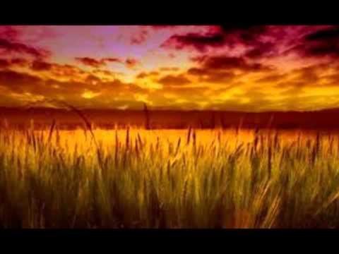 Средства для повышения потенции не на травах
