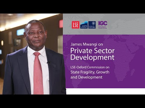 James Mwangi: Challenges for private sector in fragile states