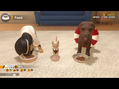 Little Friends: Dogs & Cats trailer (Switch) thumbnail