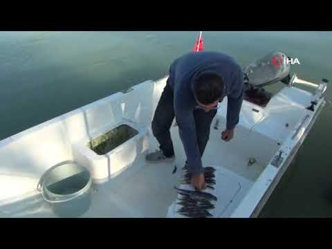 Amatör balıkçılar tepkili