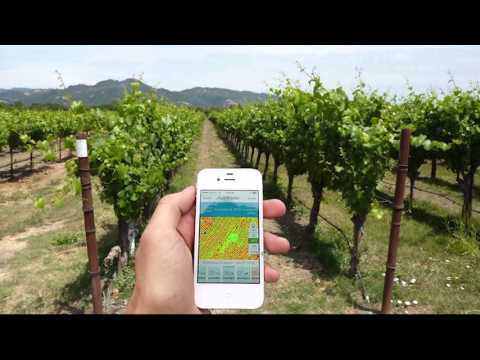 TerrAvion Case Study Constellation Brands Sonoma