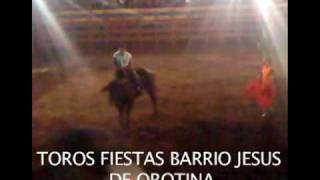 preview picture of video 'TOROS EN BARRIO JESUS OROTINA MARZO 2010.mov'