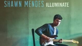 Shawn Mendes  Mercy (Humming Loop)