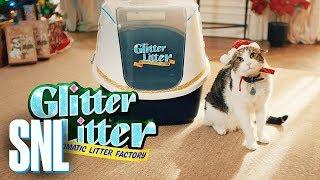 Cut for Time: Glitter Litter Automatic Litter - SNL