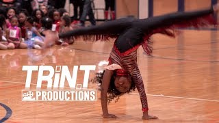 Dancing Dolls of Atlanta, Georgia | Tryouts (2019)