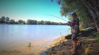 Рыбалка на закидушки, донку, спиннинг. Сом на червя, крупный карась, густера, щука, окунь, судак