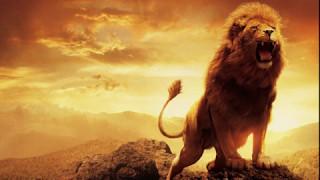Leo Zodiac Sign Secrets Revealed - Astrology Basics 30