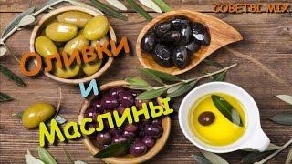 Все что нужно знать об оливках и маслинах. Польза и вред оливок. Разница маслин и оливок
