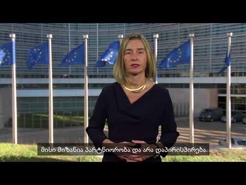 ევროკავშირის უმაღლესი წარმომადგენელი ფედერიკა მოგერინი მადლობას უხდის სამოქალაქო
