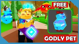 PYRAMID PARADISE UPDATE + CODES! BOUGHT A LEVEL 1000 PET ...
