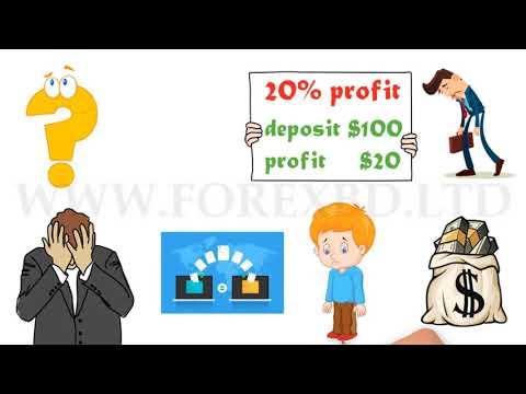 Investiție de bani 2021 pe internet