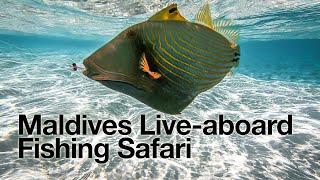 Maldives Fly Fishing Safari Trip - Full Video