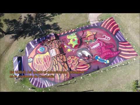 DRONE: EL Skatepark quedó convertido en un gran mural temático