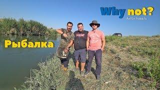 Рыбалка на канале саркисова в узбекистане