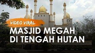 Cerita di Balik Video Viral Masjid Megah di Tengah Hutan