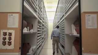 Newswise:Video Embedded perfil-smithsonian-antonio-curet-curador-de-arqueolog-a