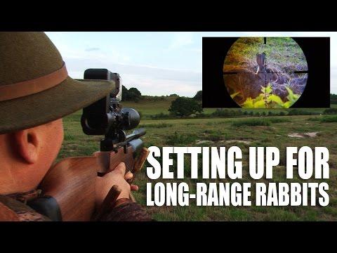 Setting up long range rabbits