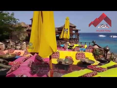 العرب اليوم - شاهد: جمال المقاهي في هضبة أم السيد