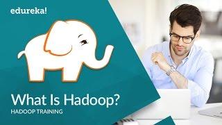 What Is Hadoop | Hadoop Tutorial For Beginners | Introduction to Hadoop | Hadoop Training | Edureka