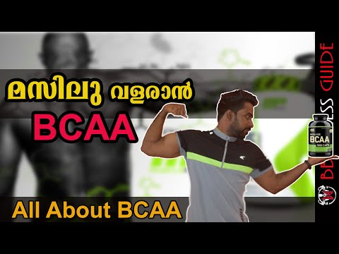 | What Are BCAA's And How Do They Work?|Malayalam Video | Certified Fitness Trainer Bibin