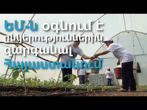 Մ-ն օգնում է ձեռնարկություններին զարգանալ Հայաստանում