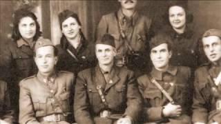 Македонска национална платформа во II светска војна (20)
