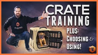 Crate Training Definitive Guide - Why And How To Do It