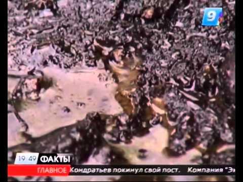 Жители Хадыженска страдают от заливающей дворы нефти из бесхозной скважины