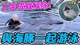 與海豚一起游泳!我根本就是水行俠!哈!