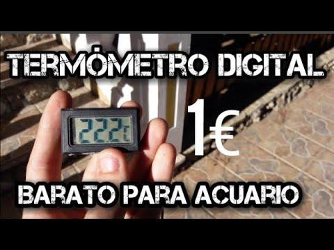EL MEJOR TERMÓMETRO DIGITAL PARA ACUARIO Y ESTANQUE BARATO: calidad precio excelente