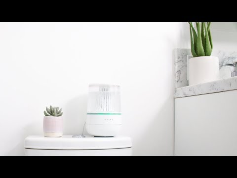 Shine: Automate Toilet Cleaning-GadgetAny