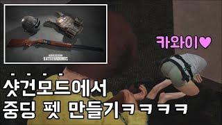 신규 샷건모드 여포하마에 반한 중딩펫ㅋㅋㅋㅋ | 우주하마 배틀그라운드