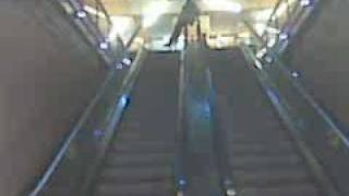 Escalator Slide