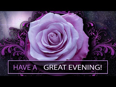 💜Have 💜a Great💜Evening!💜