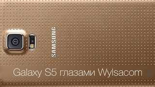 Samsung Galaxy S5 глазами Wylsacom